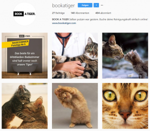 Cat Content kann im Instagram Marketing helfen